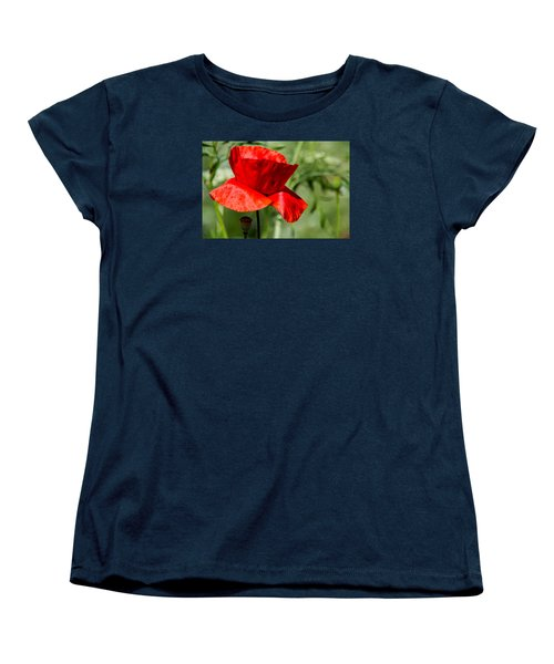 Poppy Women's T-Shirt (Standard Cut) by Martina Fagan