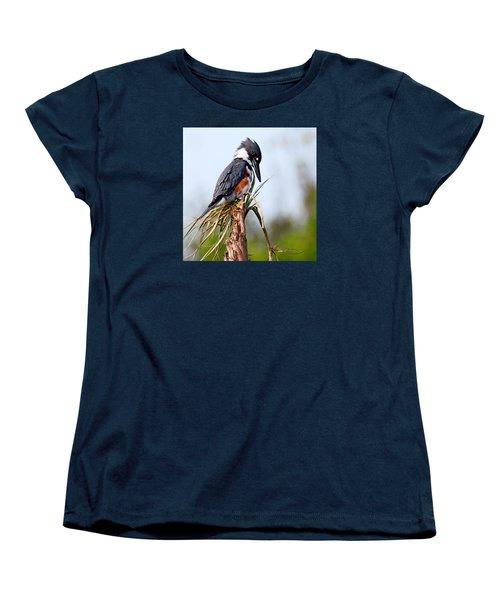 Belted Kingfisher Women's T-Shirt (Standard Cut)