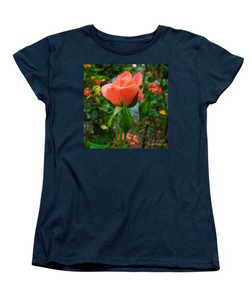 A Delicate Pink Rose Women's T-Shirt (Standard Cut) by Chad and Stacey Hall