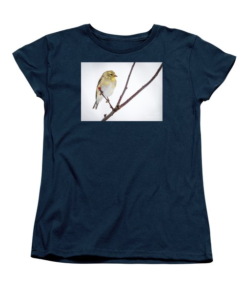 A Sign Of Spring Women's T-Shirt (Standard Cut) by Ricky L Jones