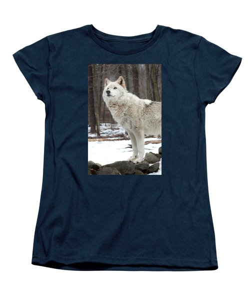 Women's T-Shirt (Standard Cut) featuring the photograph A Wolfs Modeling Pose by Gary Slawsky