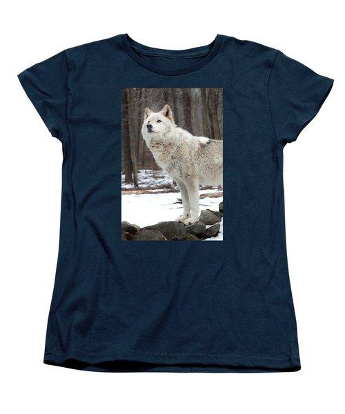 A Wolfs Modeling Pose Women's T-Shirt (Standard Cut) by Gary Slawsky