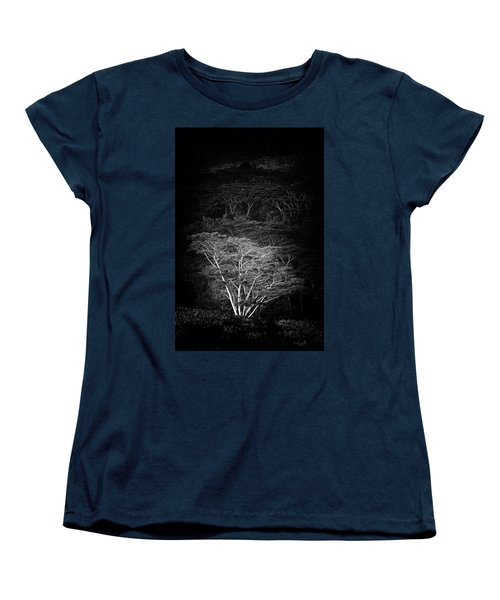 Women's T-Shirt (Standard Cut) featuring the photograph Albezia Tree by Roger Mullenhour