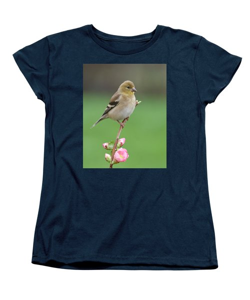 American Goldfinch Women's T-Shirt (Standard Cut) by Doug Herr