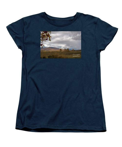 Anaconda Smelter Stack Women's T-Shirt (Standard Cut) by Cindy Murphy - NightVisions