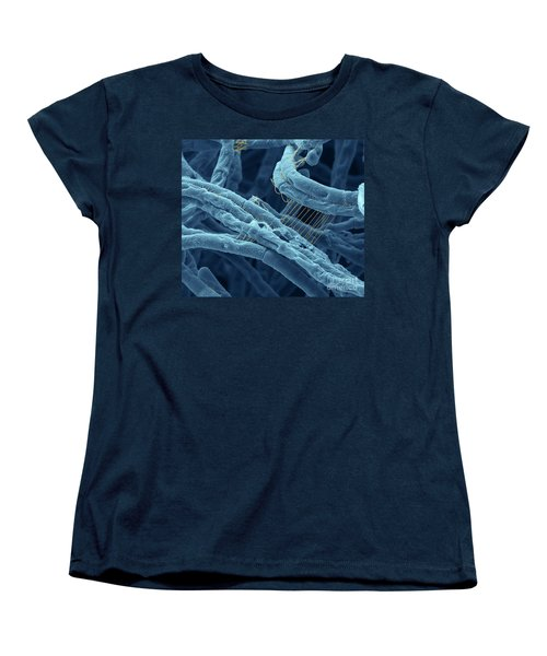 Anthrax Bacteria Sem Women's T-Shirt (Standard Cut) by Eye Of Science and Photo Researchers
