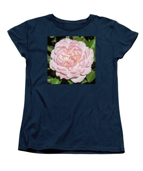 Antique Pink Rose Women's T-Shirt (Standard Cut) by Mark Barclay