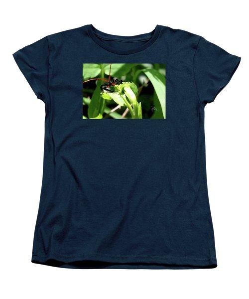 Women's T-Shirt (Standard Cut) featuring the photograph Assassin Bug by Meta Gatschenberger