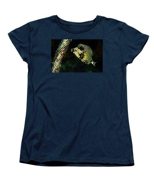 Women's T-Shirt (Standard Cut) featuring the photograph Baby Trunk Fish by Jean Noren