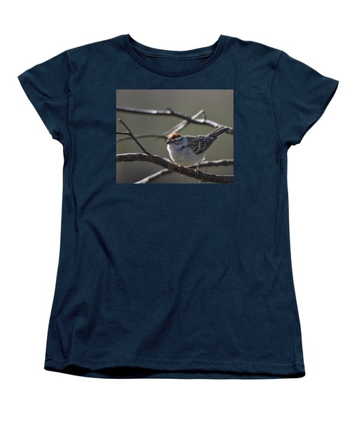 Women's T-Shirt (Standard Cut) featuring the photograph Backlit Chipping Sparrow by Susan Capuano