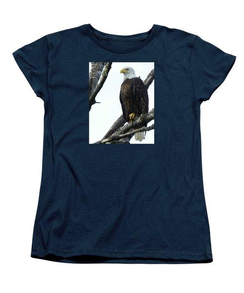 Bald Eagle 4 Women's T-Shirt (Standard Cut) by Steven Clipperton