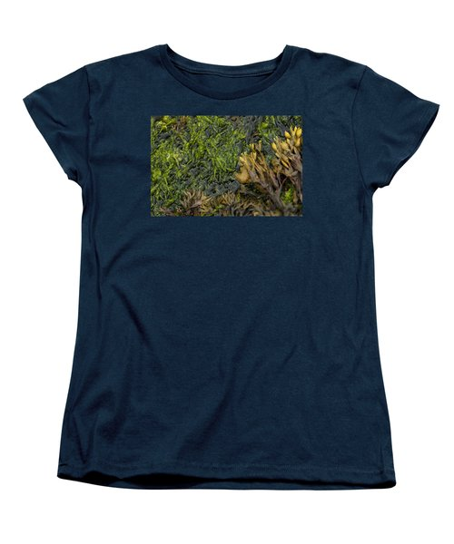 Women's T-Shirt (Standard Cut) featuring the photograph Bar Harbor Maine Coastal Life by Kevin Blackburn