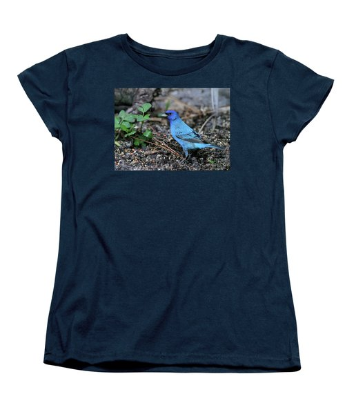 Beautiful Indigo Bunting Women's T-Shirt (Standard Cut) by Sabrina L Ryan