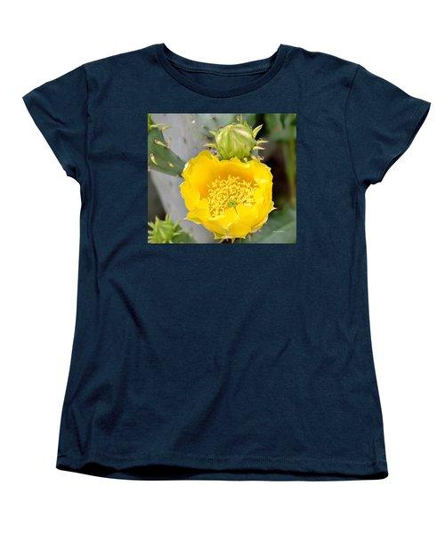 Beauty Begets Beauty Women's T-Shirt (Standard Cut) by Maria Urso