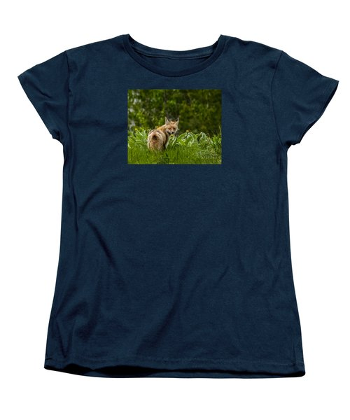 Women's T-Shirt (Standard Cut) featuring the photograph Beaver Creek Mama Fox In Spring by Yeates Photography
