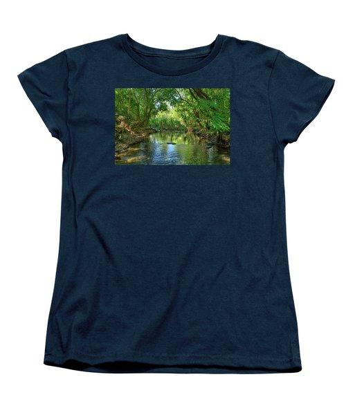 Berry Springs Women's T-Shirt (Standard Cut) by Racheal Christian
