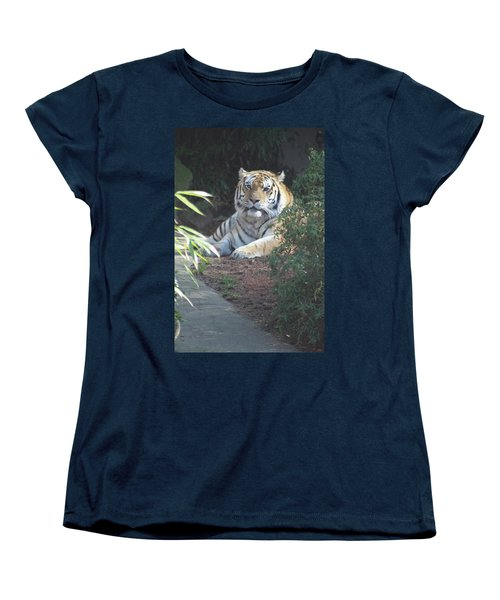 Women's T-Shirt (Standard Cut) featuring the photograph Beyond The Branches by Laddie Halupa