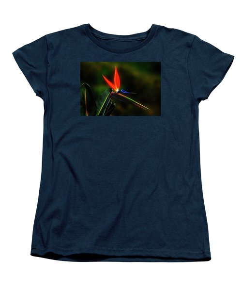 Bird Of Pardise Women's T-Shirt (Standard Cut) by Joseph Hollingsworth