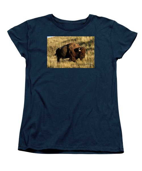 Bison  Women's T-Shirt (Standard Cut) by Cindy Murphy - NightVisions