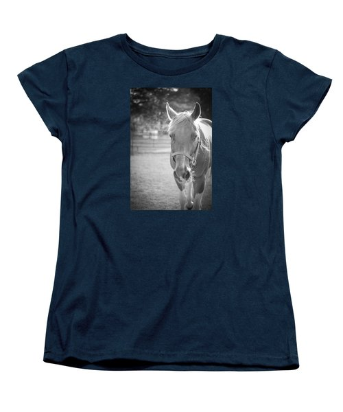 Black And White Portrait Of A Horse In The Sun Women's T-Shirt (Standard Cut) by Kelly Hazel