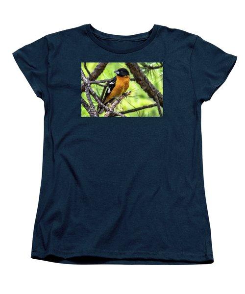 Black-headed Grosbeak Women's T-Shirt (Standard Cut) by Marilyn Burton