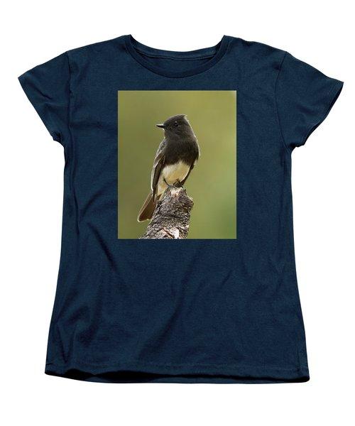 Black Phoebe Women's T-Shirt (Standard Cut) by Doug Herr