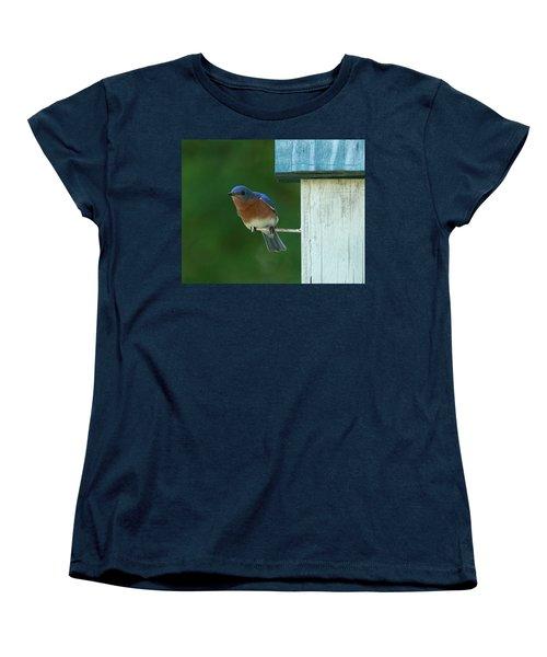 Bluebird Women's T-Shirt (Standard Cut)
