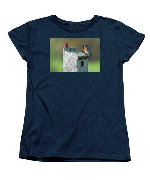 Women's T-Shirt (Standard Cut) featuring the photograph Bluebird by Steve Stuller
