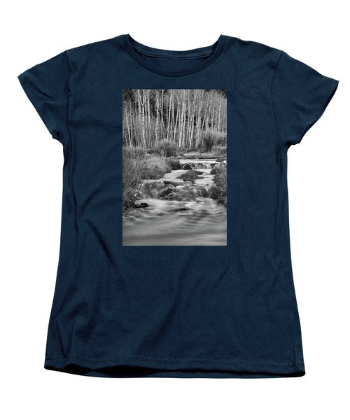 Bonanza Streaming Women's T-Shirt (Standard Cut) by James BO Insogna
