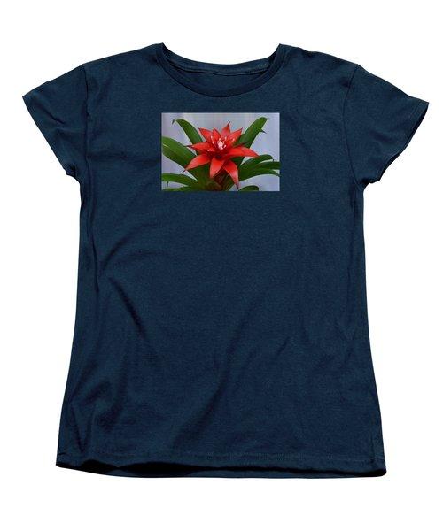 Bromeliad Women's T-Shirt (Standard Cut) by Terence Davis