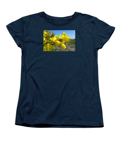 Broom In Bloom 4 Women's T-Shirt (Standard Cut) by Jean Bernard Roussilhe