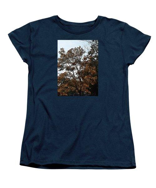 Brown Women's T-Shirt (Standard Cut) by Jana E Provenzano