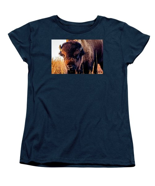 Buffalo Face Women's T-Shirt (Standard Cut) by Jay Stockhaus
