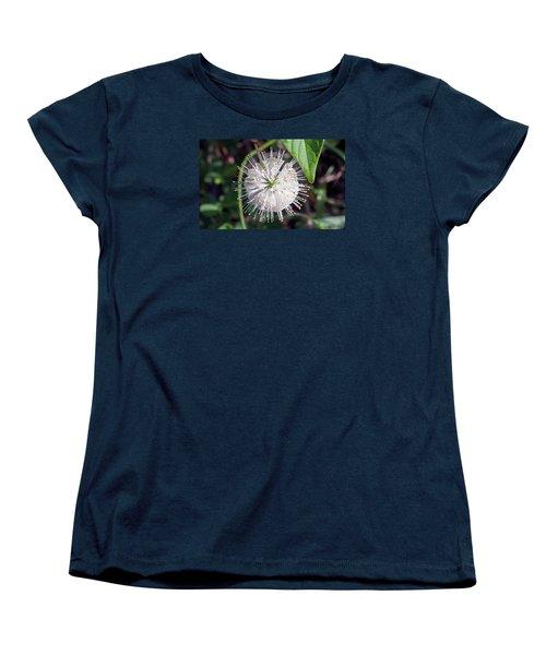 Buttonbush Women's T-Shirt (Standard Cut) by Kenneth Albin