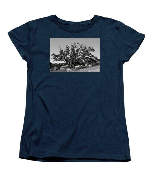 California Roadside Tree - Black And White Women's T-Shirt (Standard Cut) by Matt Harang