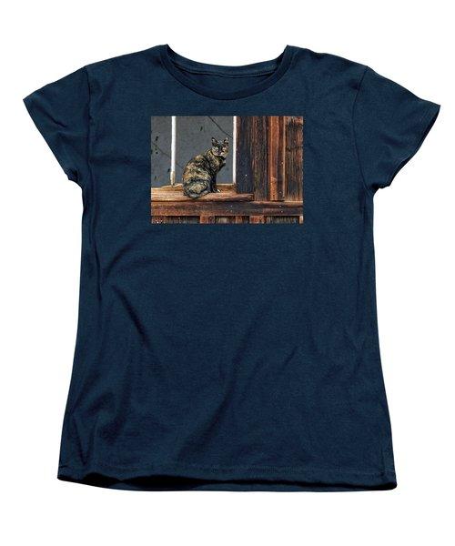 Cat In A Window Women's T-Shirt (Standard Cut) by Scott Warner