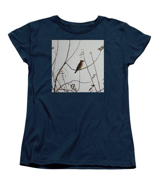Cedar Wax Wing In Tree Women's T-Shirt (Standard Cut) by Kenneth Willis