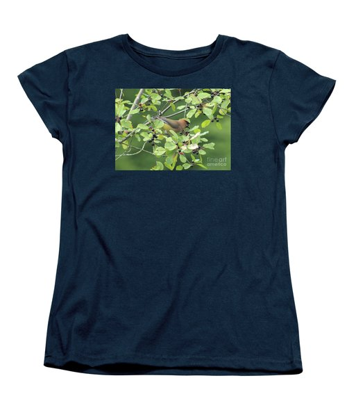 Cedar Waxwing Eating Berries Women's T-Shirt (Standard Cut) by Maili Page