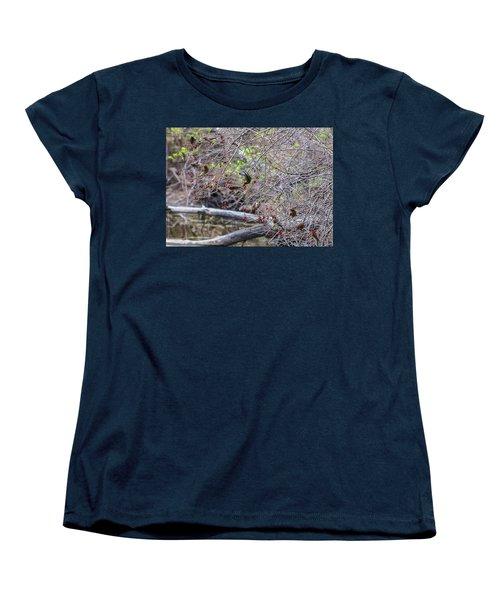 Women's T-Shirt (Standard Cut) featuring the photograph Cedar Waxwings Feeding by Edward Peterson