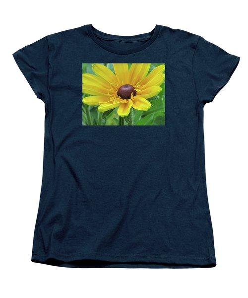 Close Up Summer Daisy Women's T-Shirt (Standard Cut) by Michele Wilson