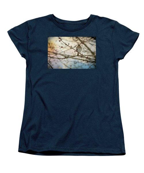 Cloudy Finch Women's T-Shirt (Standard Cut) by Trish Tritz