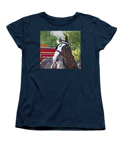 Clydesdale At Esp Women's T-Shirt (Standard Cut) by Alice Gipson