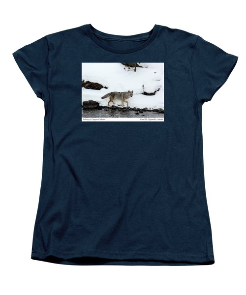 Coyote In Yellowstone National Park Women's T-Shirt (Standard Cut) by Carol M Highsmith
