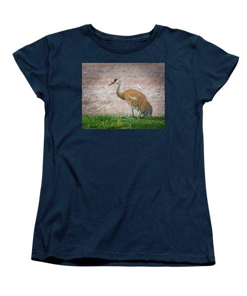 Crane Down Women's T-Shirt (Standard Cut) by Bill Pevlor