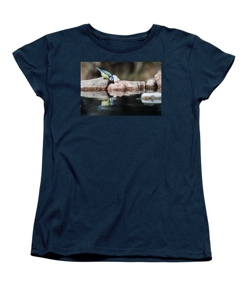 Curious Blue Tit Women's T-Shirt (Standard Cut) by Torbjorn Swenelius