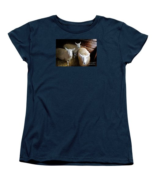 Curious Sheep Women's T-Shirt (Standard Cut) by Kevin Fortier