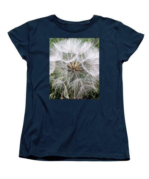Dandelion Seed Head  Women's T-Shirt (Standard Cut) by Kathy Spall