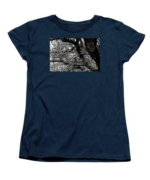 Dark Forest Women's T-Shirt (Standard Cut) by Renie Rutten