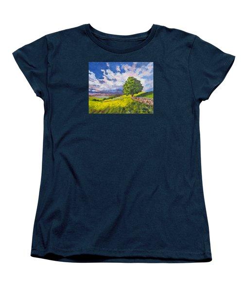 Dazzling Sky Pallet Knife Women's T-Shirt (Standard Cut) by Lisa Boyd