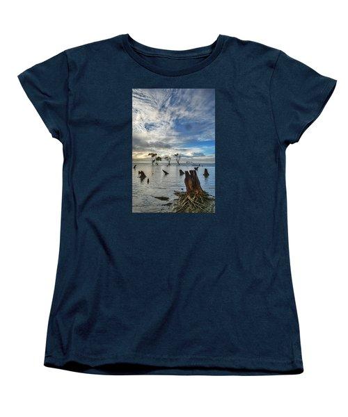 Desolation Women's T-Shirt (Standard Cut) by Robert Charity